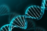 Scientists Look To DNA For Data Storage