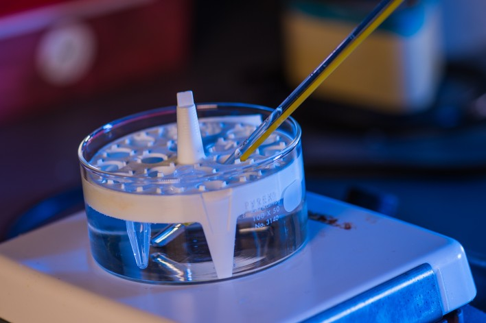 New Hydrogel Created At Rice University