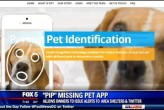 Facial Recognition App Helps Lost Pets Get Back To Owners